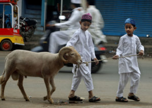 Indian Muslim boys take a goat for sacrifice after offering prayers on Eid al-Adha in Hyderabad, India, Wednesday, Nov. 17, 2010.