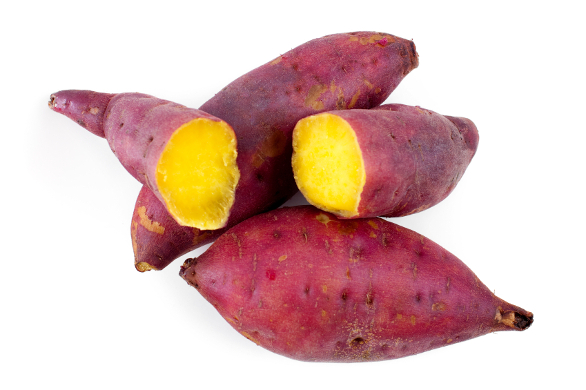 New variety of sweet potato for Africa's food security