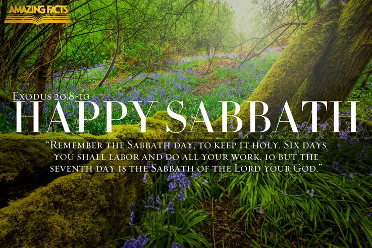 Basic Questions Concerning Sabbath Observance and Their Answers